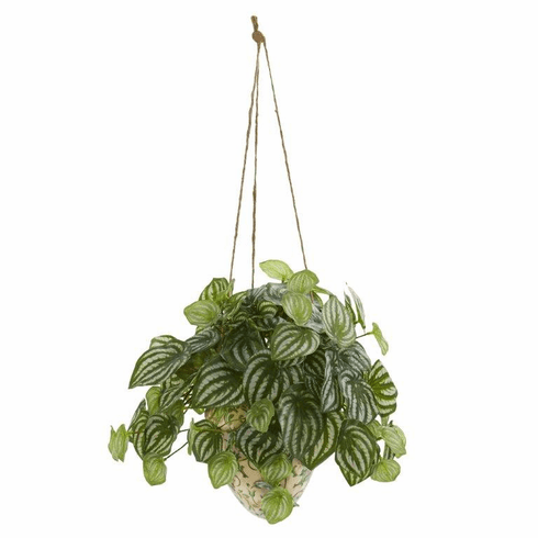 "24"" Watermelon Peperomia Artificial Plant in Hanging Vase (Real Touch)"
