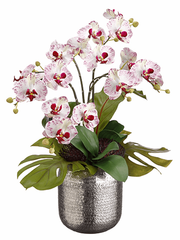 "25"" Artificial Bird's Nest Leaf, Phalaenopsis in Silver Bowel Silk Flower Arrangement"
