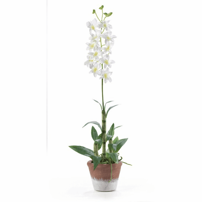 "25"" Dendrobium w/White Wash Pot Silk Flower Arrangement"