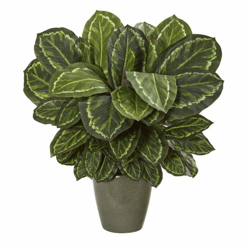 "25"" Maranta Artificial Plant in Decorative Planter"