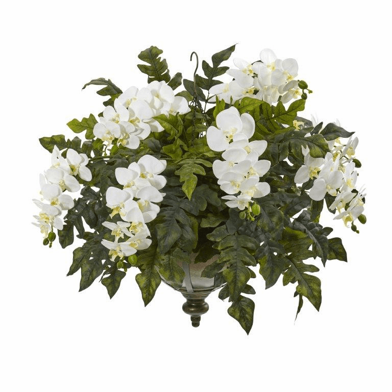 25� Phalaenopsis Orchid and Holly Fern Artificial Plant in Metal Hanging Bowl - Cream