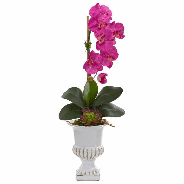 "25"" Phalaenopsis Orchid and Succulent Artificial Arrangement in Urn - Dark Pink"