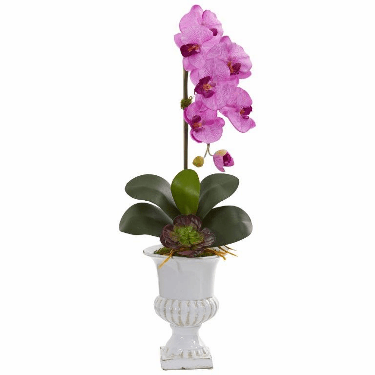 "25"" Phalaenopsis Orchid and Succulent Artificial Arrangement in Urn - Mauve"