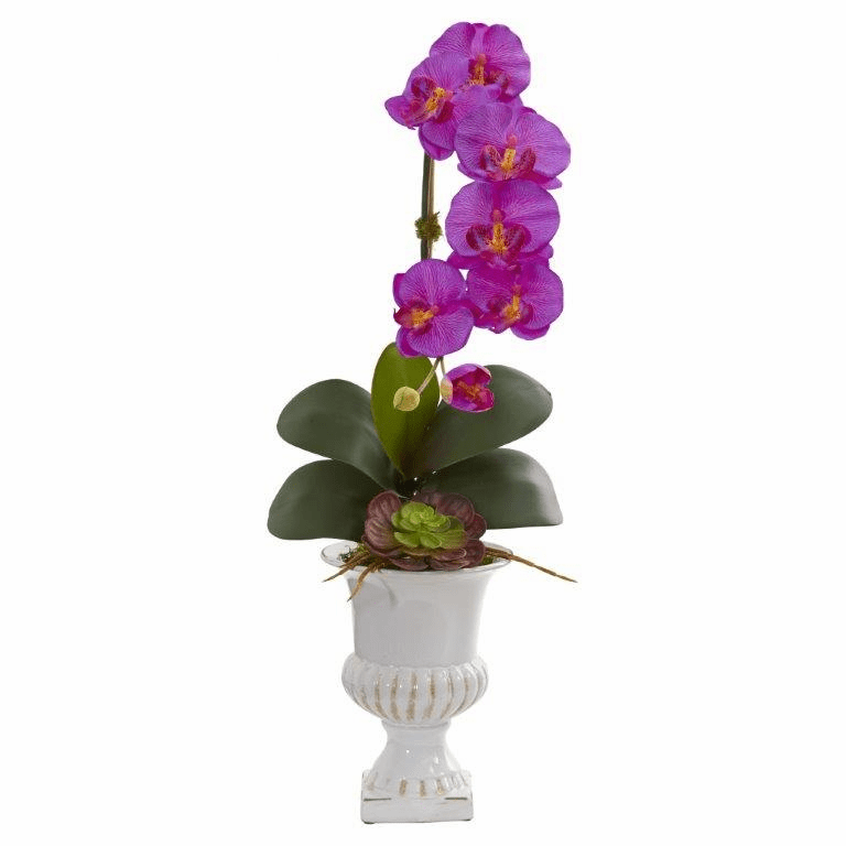 "25"" Phalaenopsis Orchid and Succulent Artificial Arrangement in Urn - Orchid"