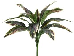 """26"""" Artificial Cordyline Bush with 15 Leaves - Set of 12 (shown in Green Pink)"""