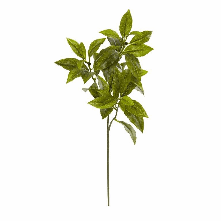 26� Coffee Leaf Artificial Plant (Set of 12) (Real Touch)