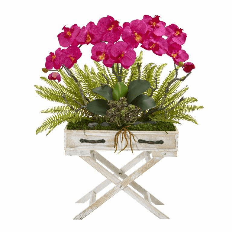 26� Phalaenopsis Orchid, Fern and Succulent Artificial Arrangement in Drawer Planter - Beauty