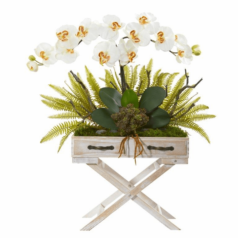26� Phalaenopsis Orchid, Fern and Succulent Artificial Arrangement in Drawer Planter - Cream