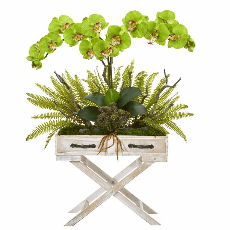 26� Phalaenopsis Orchid, Fern and Succulent Artificial Arrangement in Drawer Planter - Green