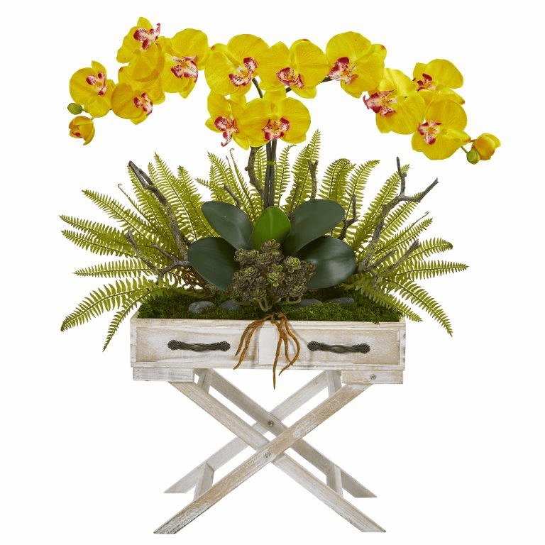 26� Phalaenopsis Orchid, Fern and Succulent Artificial Arrangement in Drawer Planter - Yellow