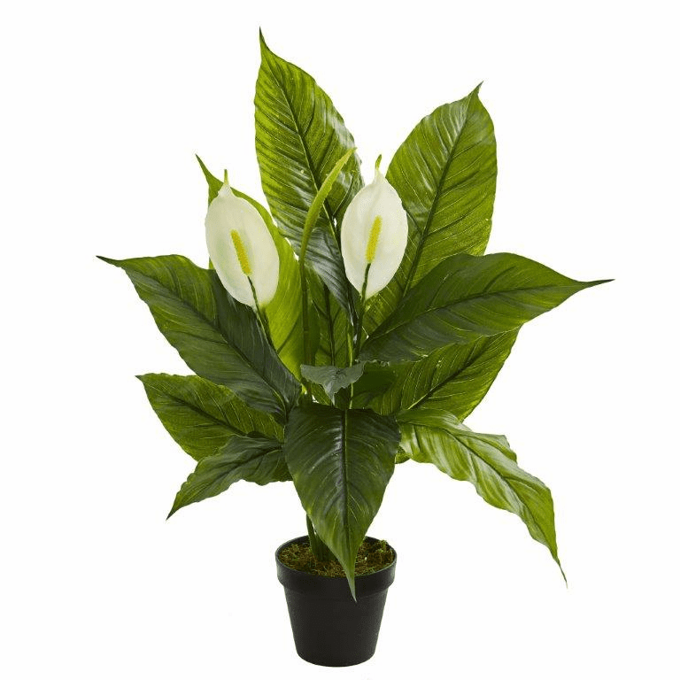 26� Spathiphyllum  Artificial Plant (Real Touch)