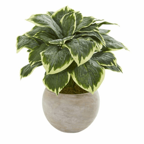 "26"" Variegated Hosta Artificial Plant in Sand Colored Bowl"