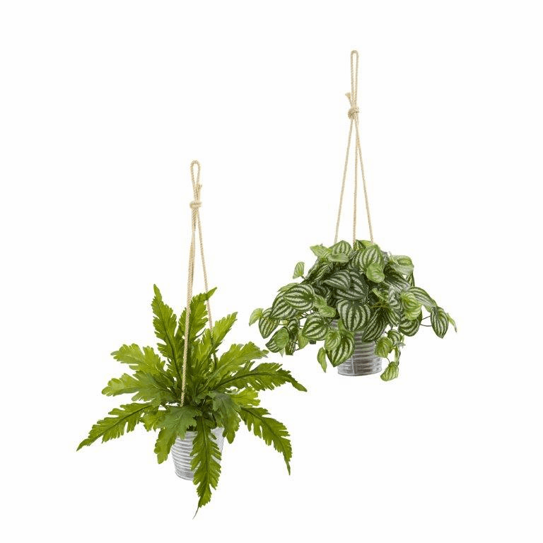 26� Watermelon Peperomia and Fern Artificial Plant in Hanging Bucket (Set of 2)