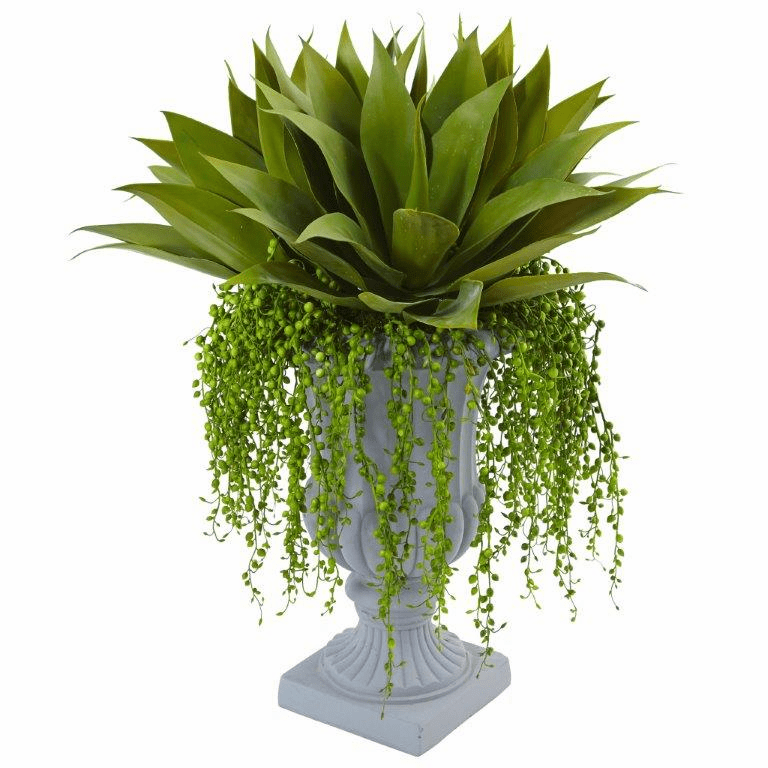"27"" Artificial Agave and Senecio Succulent Arrangement"