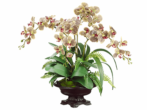 "27"" Artificial Phalaenopsis Orchid, Boston Fern and Moss Flower Arrangement in Bowl"