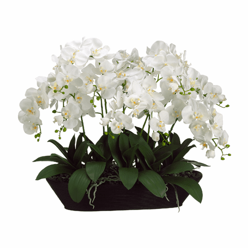 "27"" Artificial Phalaenopsis Orchid in Oval Container"