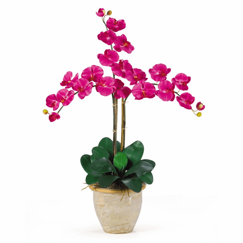 "27"" Triple Stem Phalaenopsis Silk Orchid Arrangement"