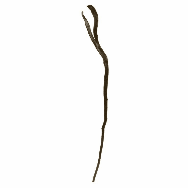 28�� Artificial Branch (Set of 12) - N/A