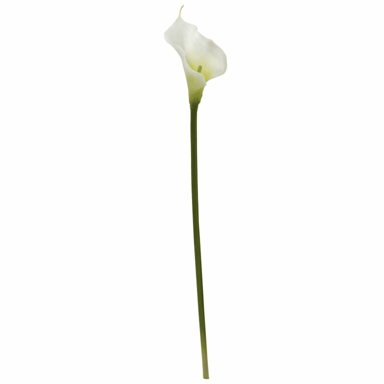 "28"" Artificial Calla Lilly Flower Stems - Set of 12"