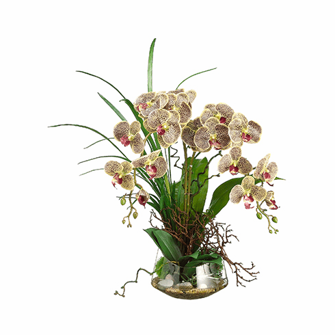"28"" Artificial Phalaenopsis Orchid and Twig Arrangement in Glass Vase"