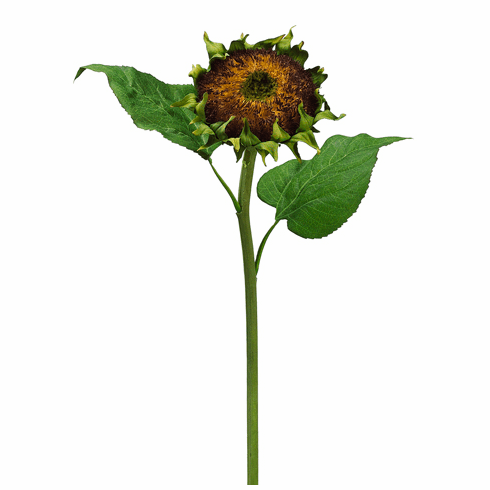 "28"" Artificial Sunflower Spray - Set of 12 Silk Flowers"