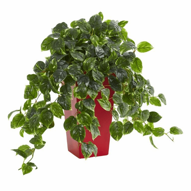 "28"" Pothos Artificial Plant in Red Planter UV Resistant (Indoor/Outdoor)"