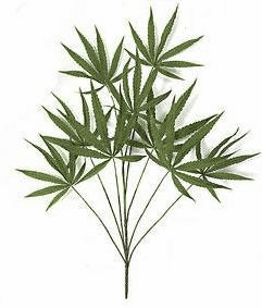 "28"" Silk Marijuana Artificial Plants - Set of 12 Stems"