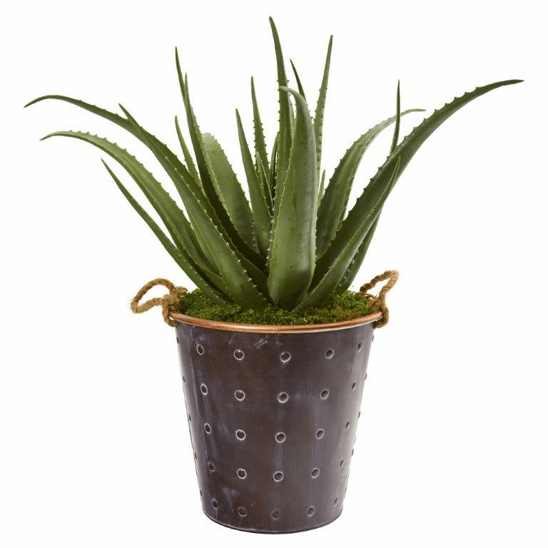 29� Aloe Artificial Plant in Decorative Pail with Rope