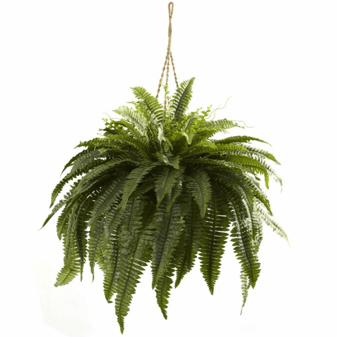 "29"" Double Giant Boston Fern Hanging Basket"