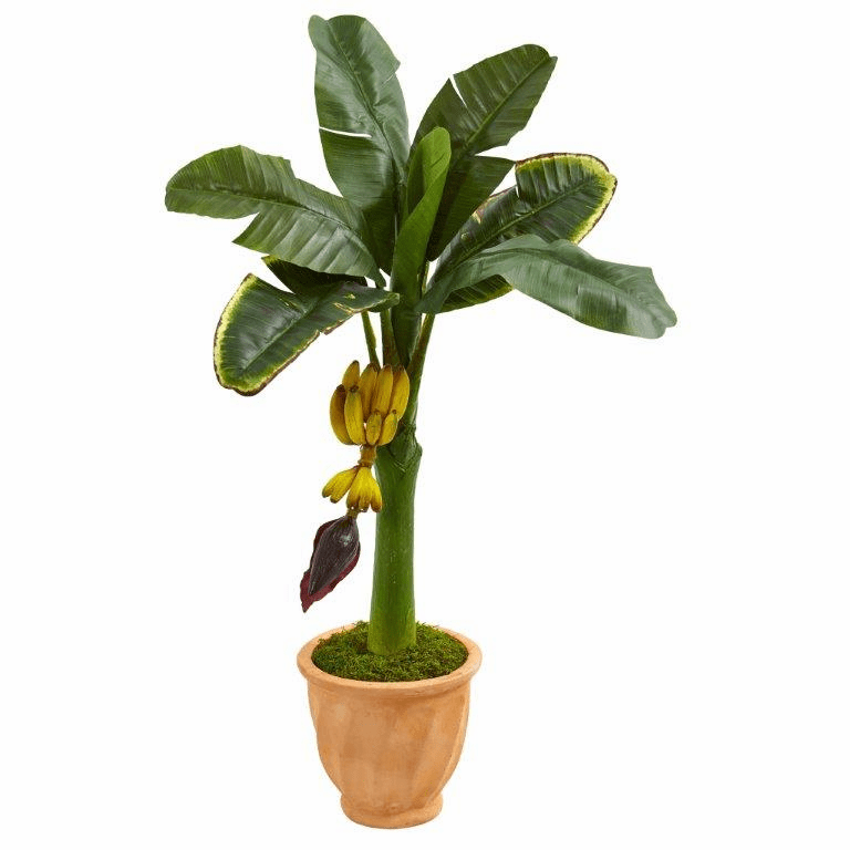 3� Banana Artificial Tree in Terracotta Planter