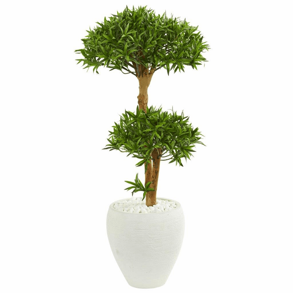 3� Bonsai Styled Podocarpus Artificial Tree in White Planter