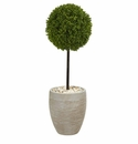 3� Boxwood Ball Topiary Artificial Tree in Oval Planter UV Resistant (Indoor/Outdoor)