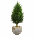 3� Cypress Cone Artificial Tree in Sand Colored Bowl UV Resistant (Indoor/Outdoor)