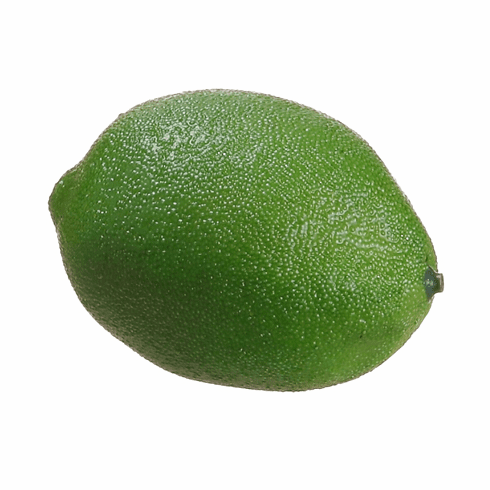 "3 dozen - 2.7"" Persian Artificial Limes"