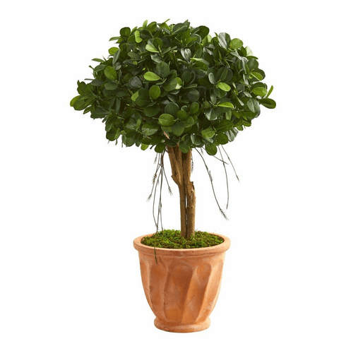 3' Ficus Artificial Tree in Terra Cotta Planter