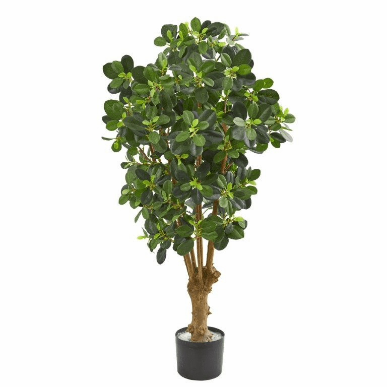 3� Panda Ficus Artificial Tree
