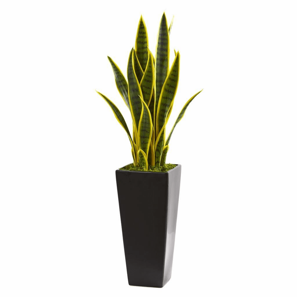 3� Sansevieria Artificial Plant in Black Planter