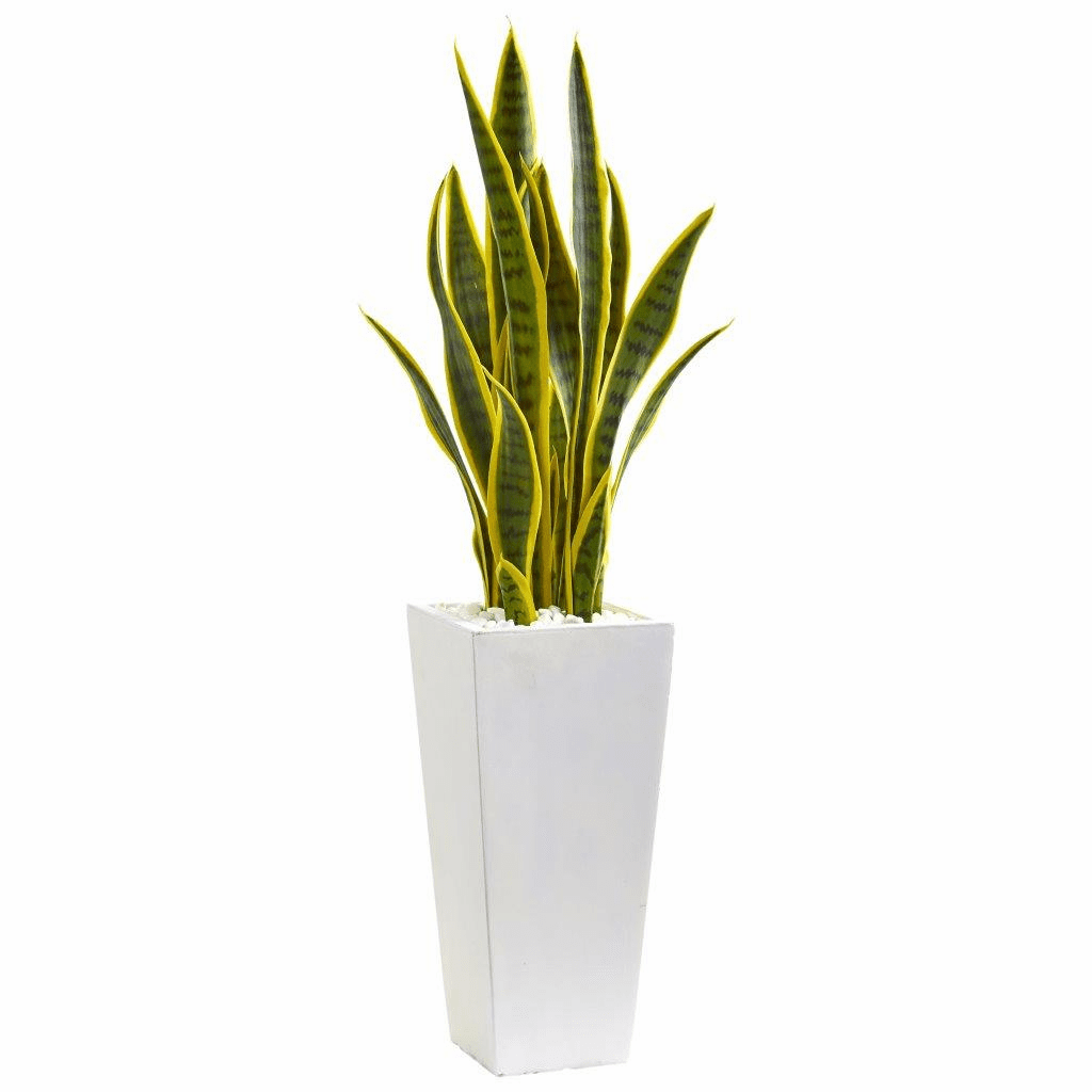 3� Sansevieria Artificial Plant in White Planter