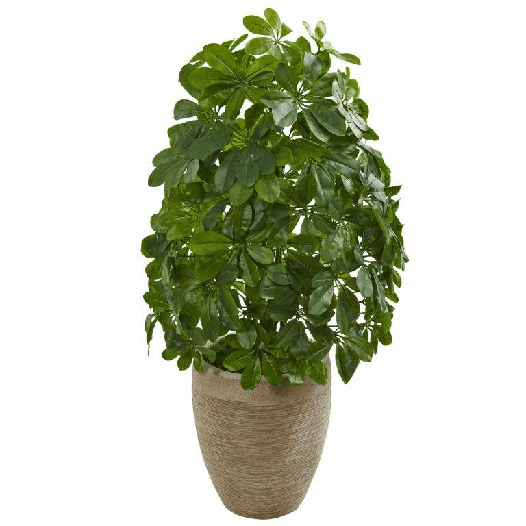 3' Schefflera Artificial Plant in Sand Colored Planter (Real Touch)