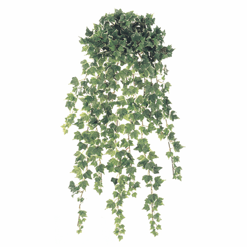 "30"" Artificial Mini Holland Ivy Hanging Bush 18 Vines - Set of 6"