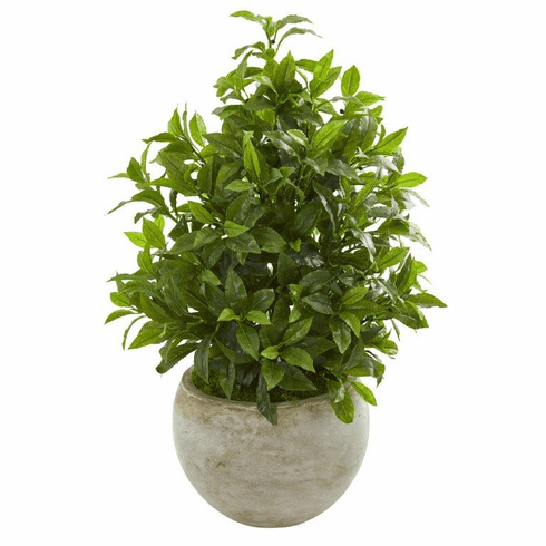 """30"""" Coffee Leaf Artificial Plant in Sandstone Bowl (Real Touch)"""