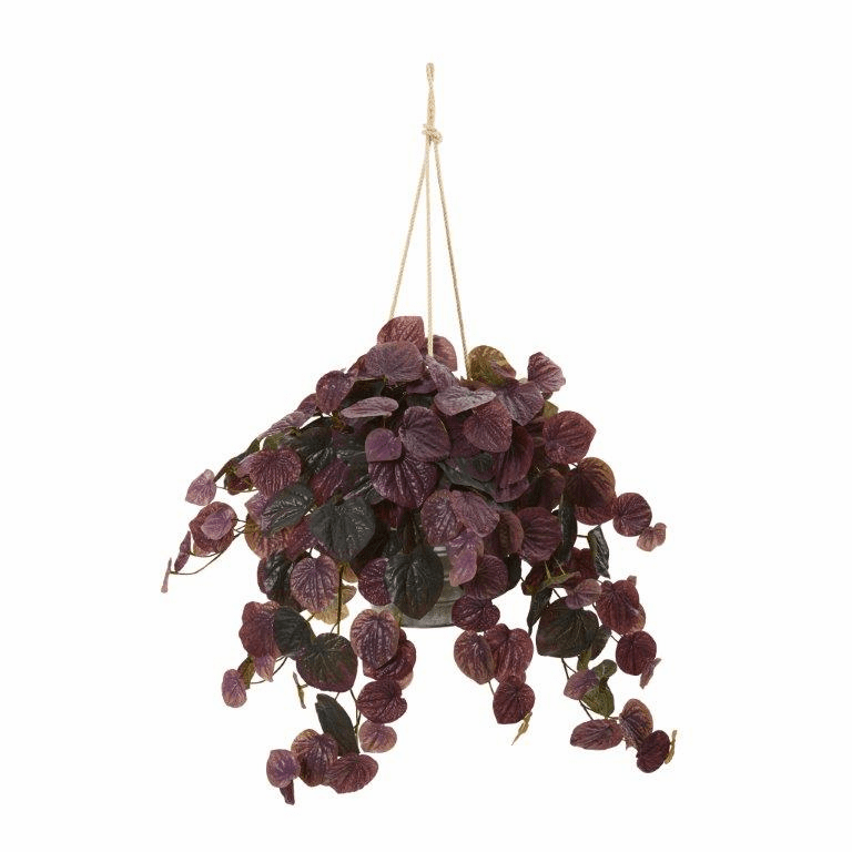 30� Peperomia Artificial Plant in Hanging Bucket (Real Touch) - Burgundy