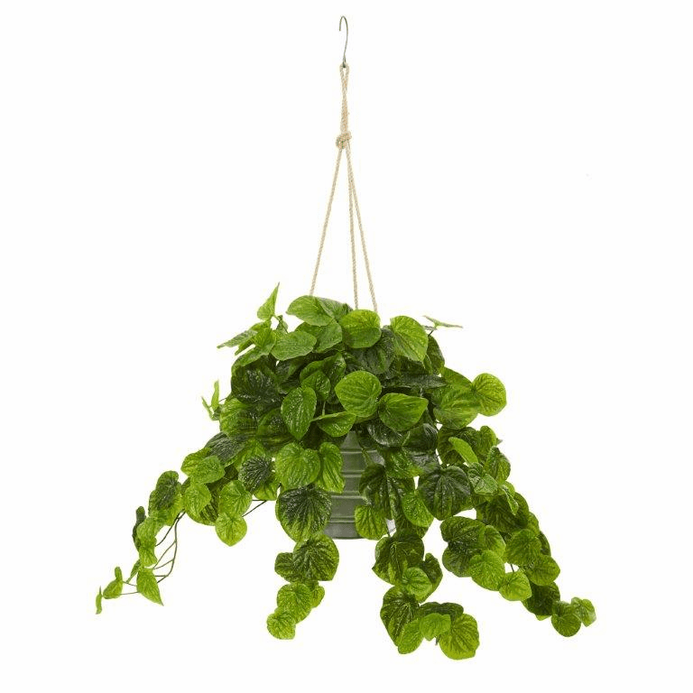 30� Peperomia Artificial Plant in Hanging Bucket (Real Touch) - Green