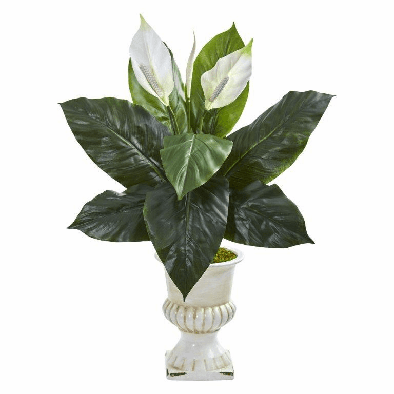 "30"" Spathifyllum Artificial Plant in White Urn"