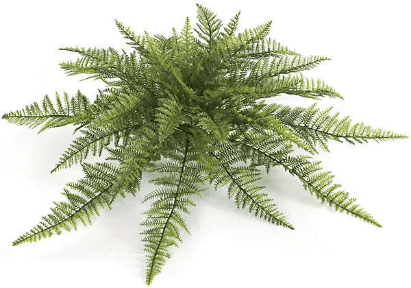 "30"" UV Infused Ruffle Fern Bush - Poly Blend UV Infused"