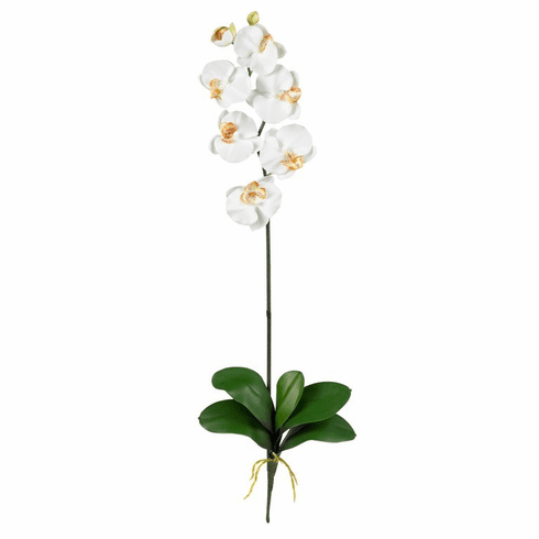 "31.5"" Phalaenopsis Silk Flower Stem (Set of 12)"
