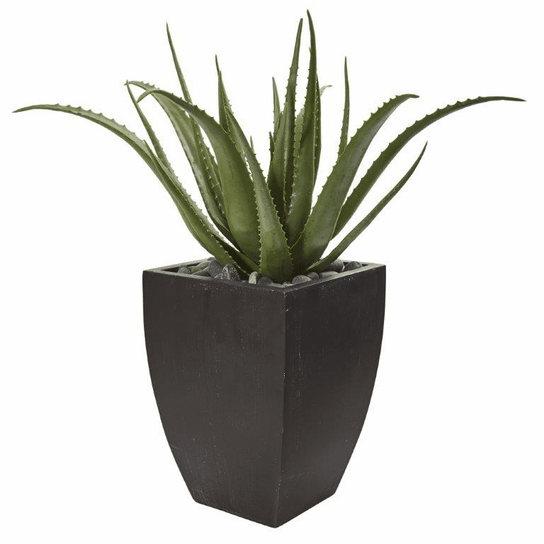 31� Aloe Artificial Plant in Black Planter