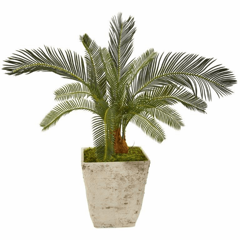 31� Cycas Artificial Plant in White Planter