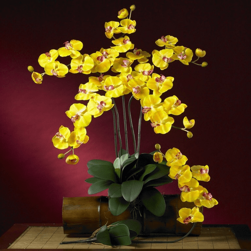 """31"""" Phalaenopsis Silk Orchid Flower w/Leaves (Set of 6 Stems - Non Potted)"""