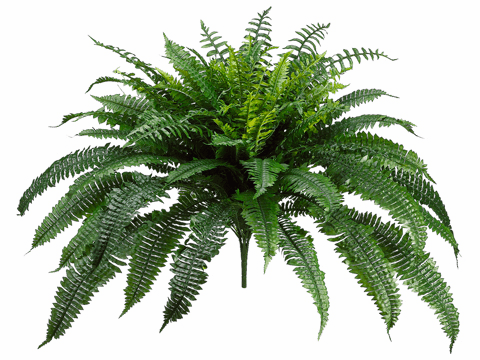 "32"" New Boston Silk Fern Bush Plants - non potted - Set of 2"